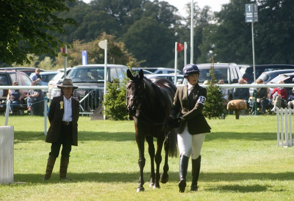 Burghley Young Event Horse Championships - Confirmation